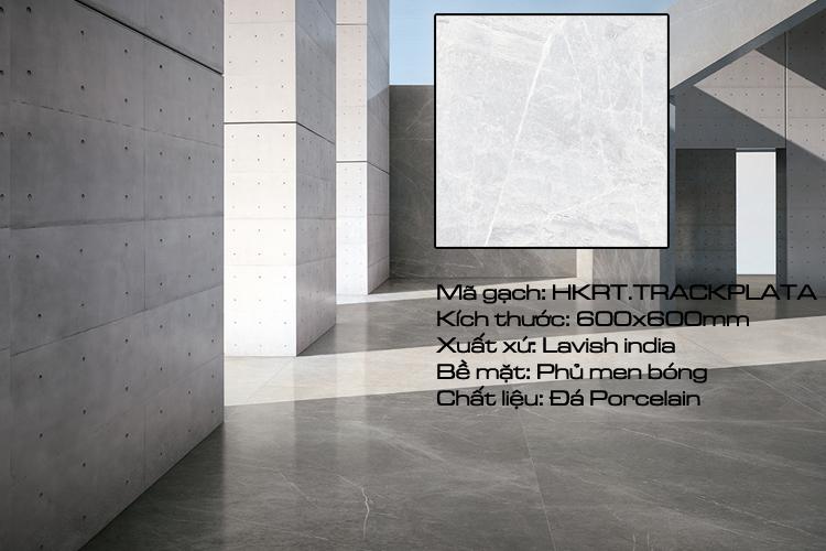 Gạch nhập khẩu 60x60 Ấn Độ  TRACKS.PLATA